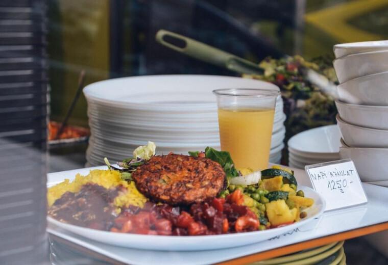 vegetarianus-etterem-husbavago-husmentes-etel-rendeles-hazhozszallitas
