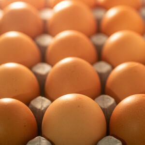 Kiderült, eddig egész életünkben rosszul tároltuk a tojást – Ez lenne a helyes tartás?