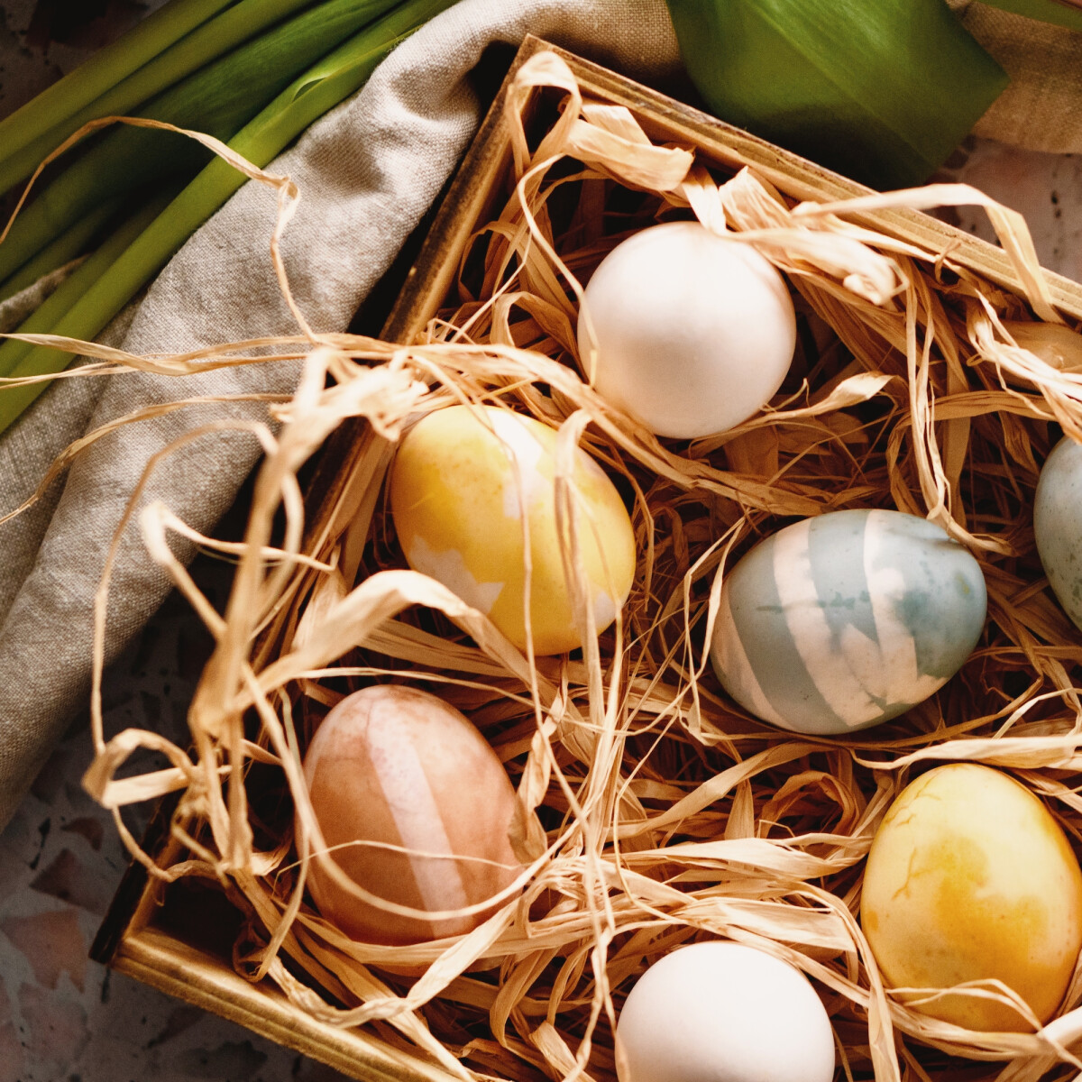 Most kiderül, miért tojik színes tojásokat a húsvéti nyúl