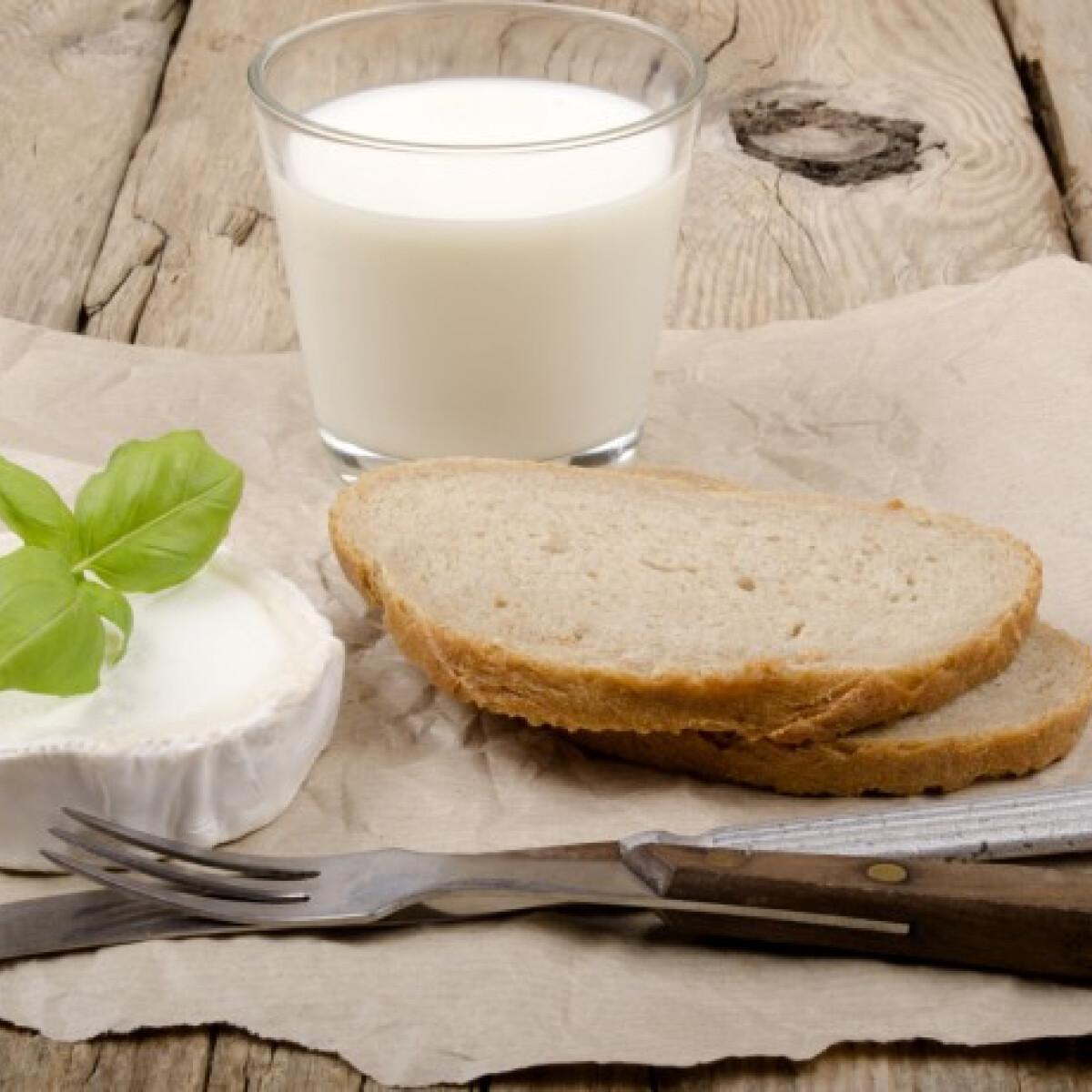 Tévhit vagy valóság: a tejfehérje-allergiások tényleg ihatnak kecsketejet?