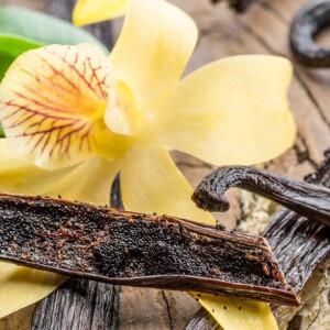 Ínycsiklandó illatok a konyhából, amiket magadra is fújhatsz