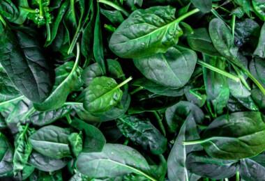 Ez a 7 legegészségesebb zöld levelű saláta