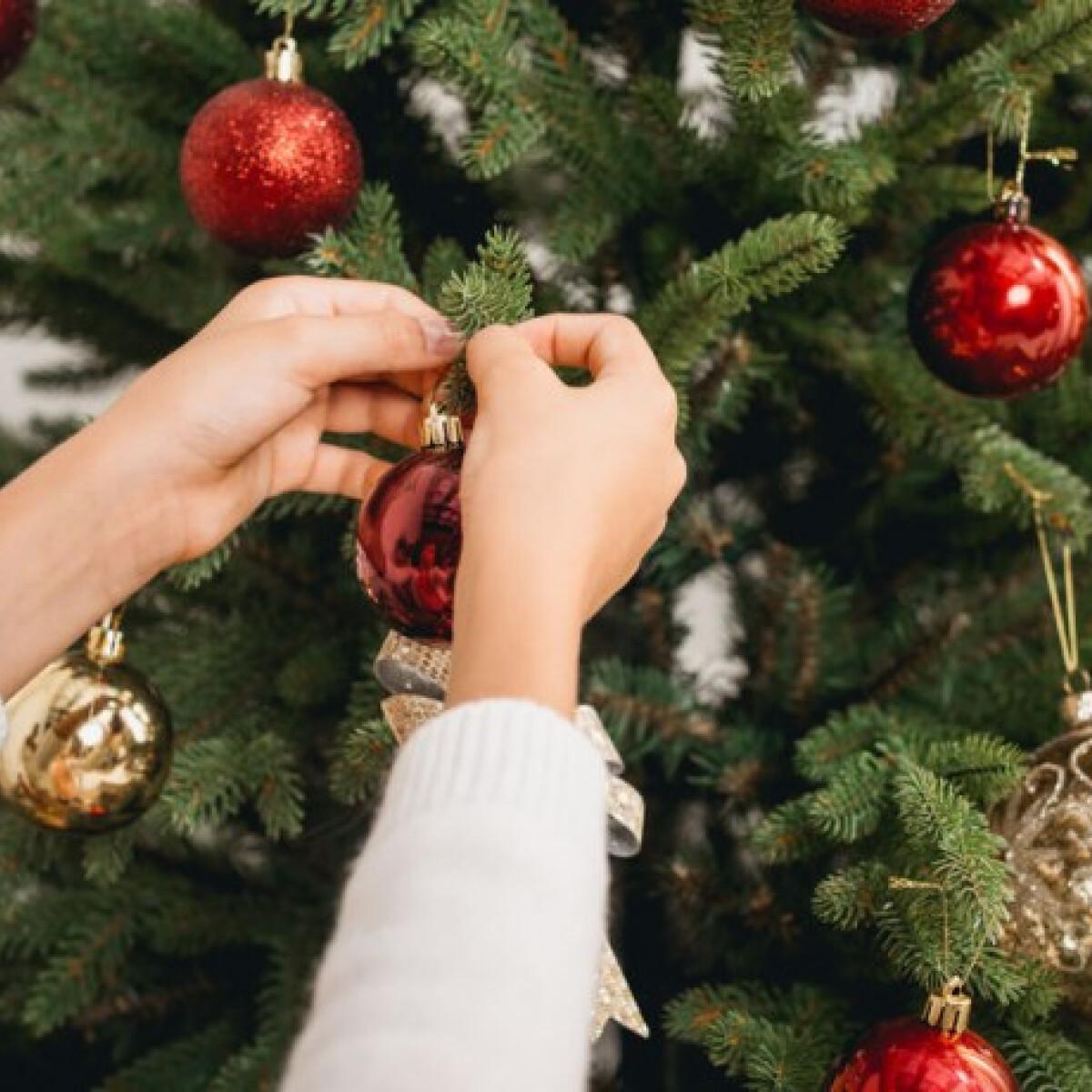 Műfenyő vagy élő fenyő - melyiket válasszuk karácsonykor?
