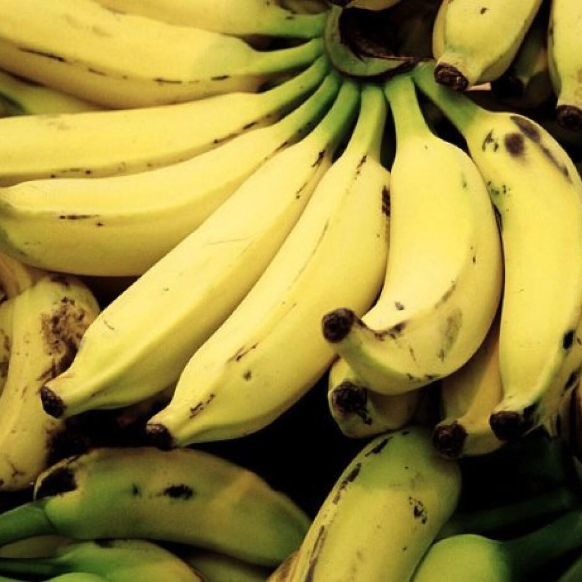Fair trade banán a piacon. Az meg micsoda?