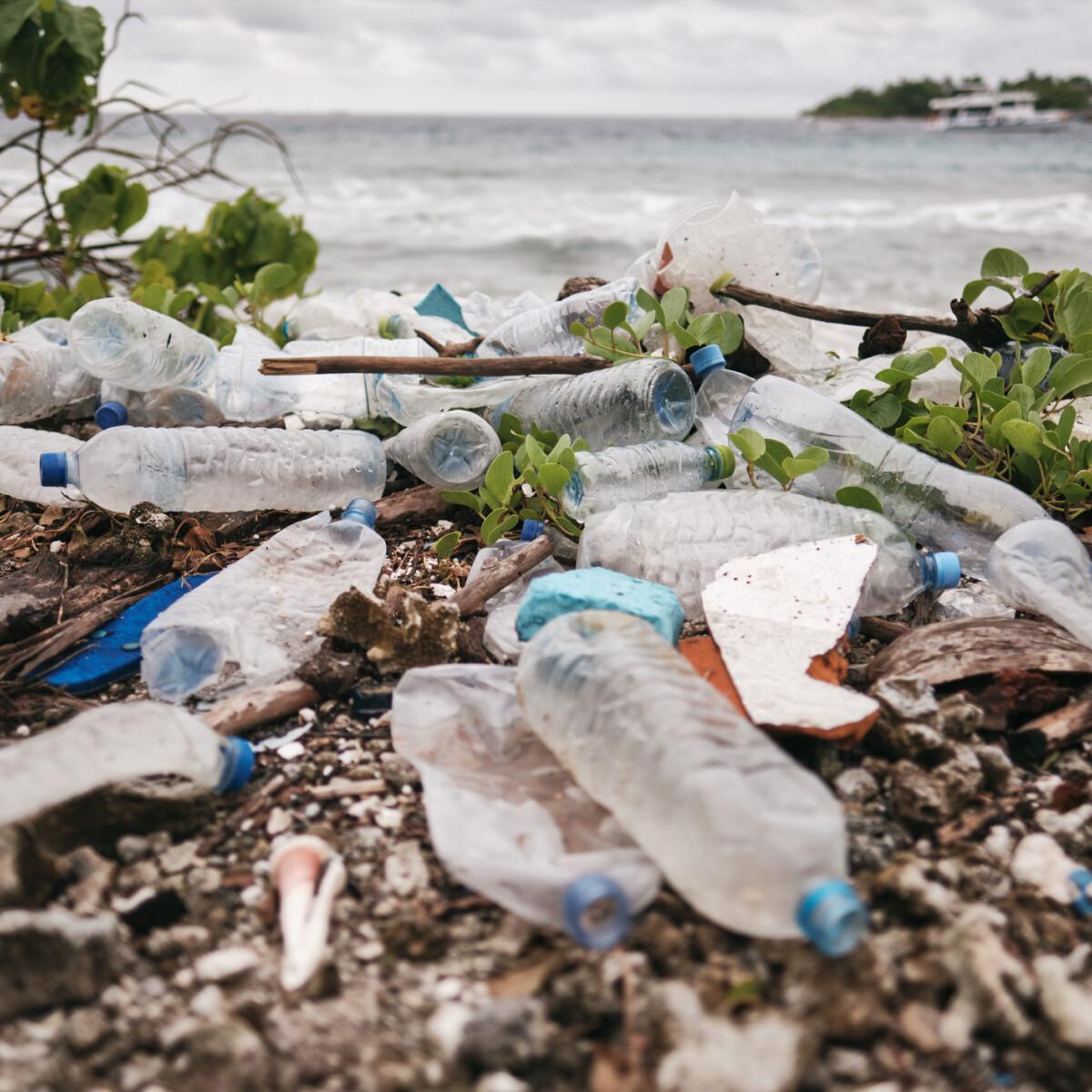 Hamarosan műanyagból készült ételeket is fogyaszthatunk