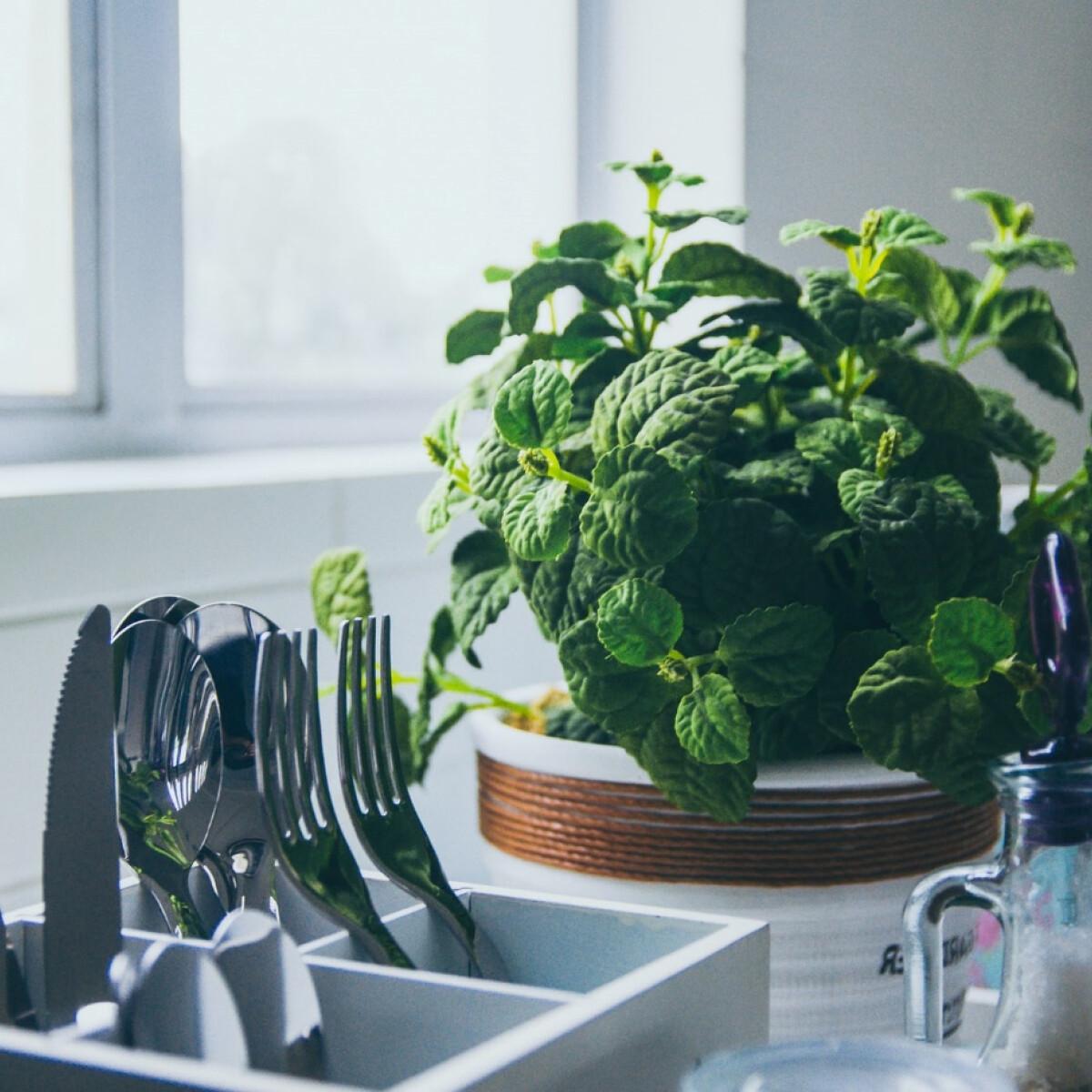 7 príma praktika, hogy kevesebb energia menjen kárba a konyhádban