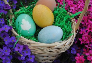 A Nagy Húsvéti Kérdőív