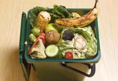 Kiderült, mennyi élelmiszer végzi a kukában a hazai háztartásokban