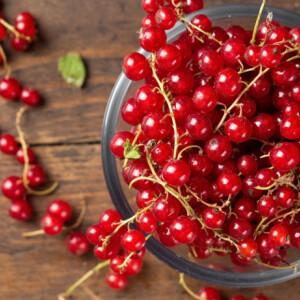 RIBIZLI: érik a kedvenc mini piros bogyósunk! Ezért ajánljuk, hogy ribiszkét egyél