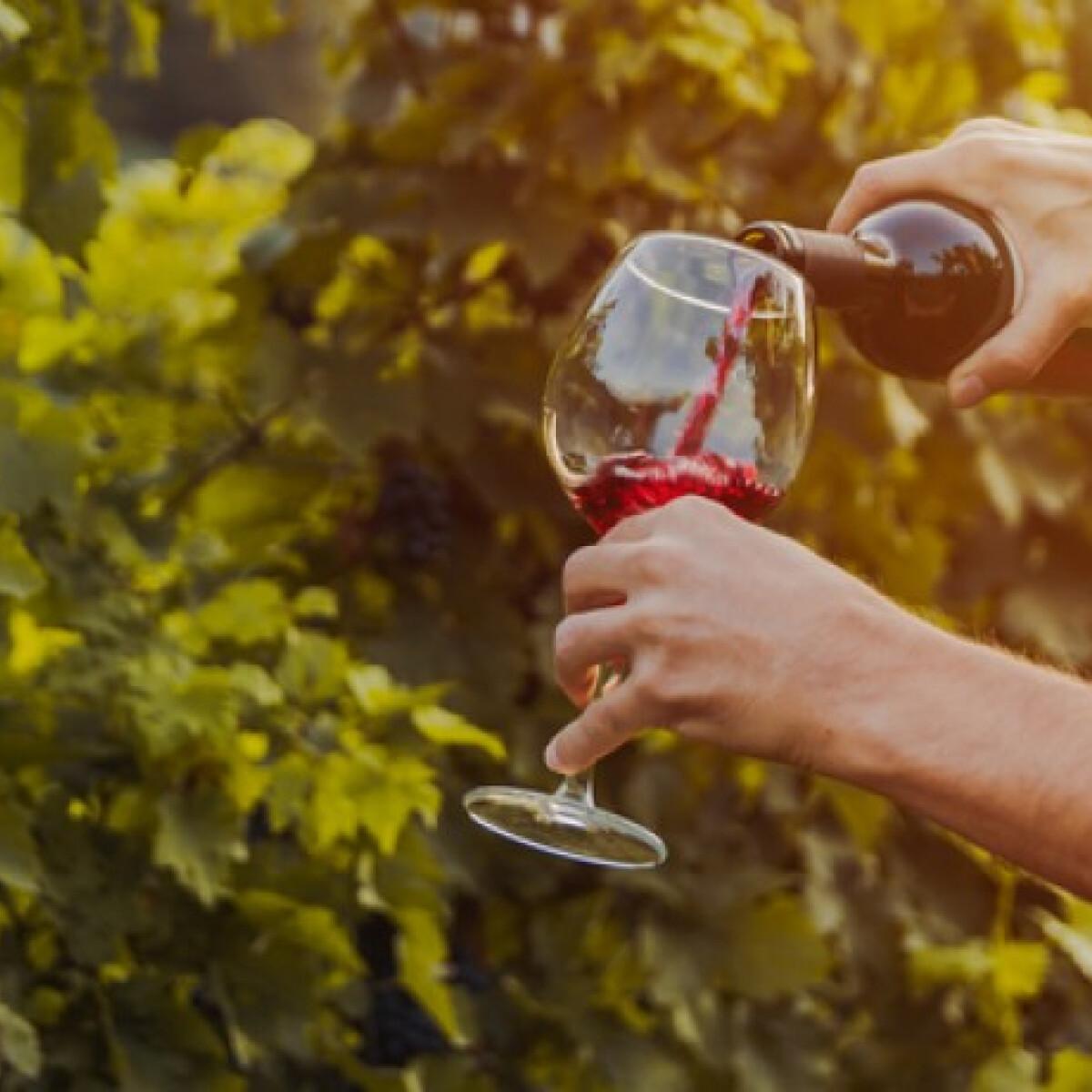 Kiderült, nem csak a szívünknek tesz jót a vörösbor
