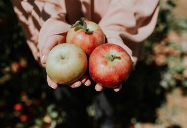 Komoly mellékhatásai lehetnek, ha túl sok almát eszel