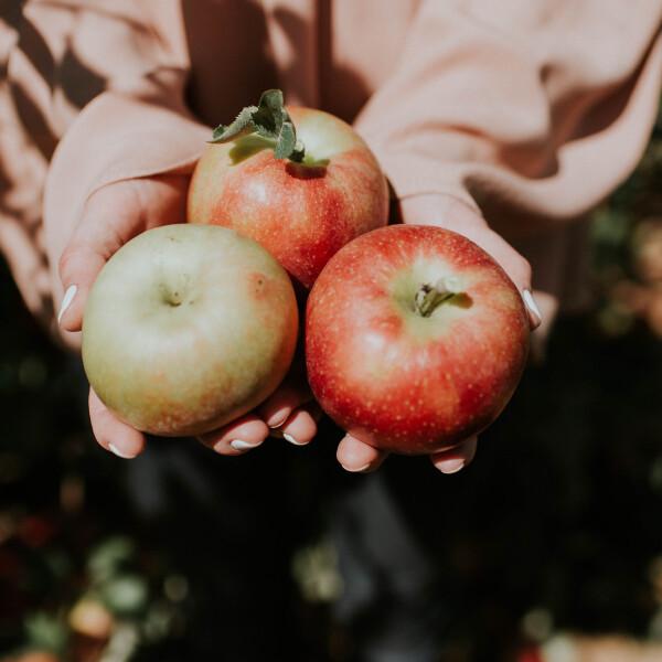 komoly-mellekhatasai-lehetnek-ha-tul-sok-almat-eszel