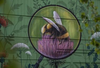 Gyönyörű, óriás falfestménnyel és méhlegelőkkel a városi beporzásért