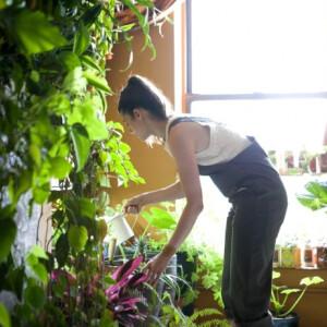 Ez a lány nem komplett...vagy igen? 500 szobanövénnyel él együtt!