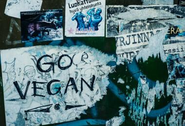 Nem divathóbort, nem trend: a vegánságnak több ezer éves hagyománya van