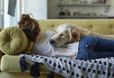 Már kutatás is bizonyítja, mennyit segítenek a háziállatok a járvány idején