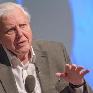 Sir David Attenborough egészen elképesztő rekordot döntött 94 évesen