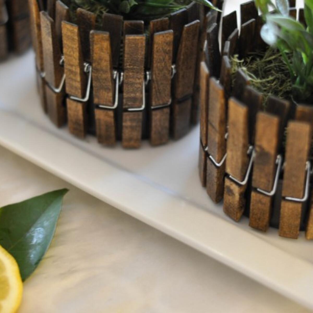 Legyen konzervből fűszernövénykaspód
