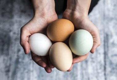 Megmutatjuk, hogyan fagyaszthatod le a tojásokat!