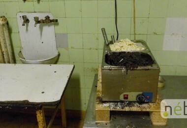 Undorító körülmények: penészes sütödét záratott be a Nébih