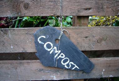 """Mi """"fán terem"""" a komposztálás?"""