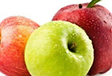 almatermésűek