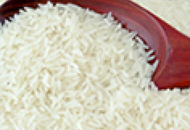 rizsek