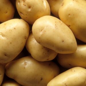 Újkrumpli