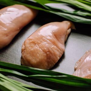 Csirkemell filé