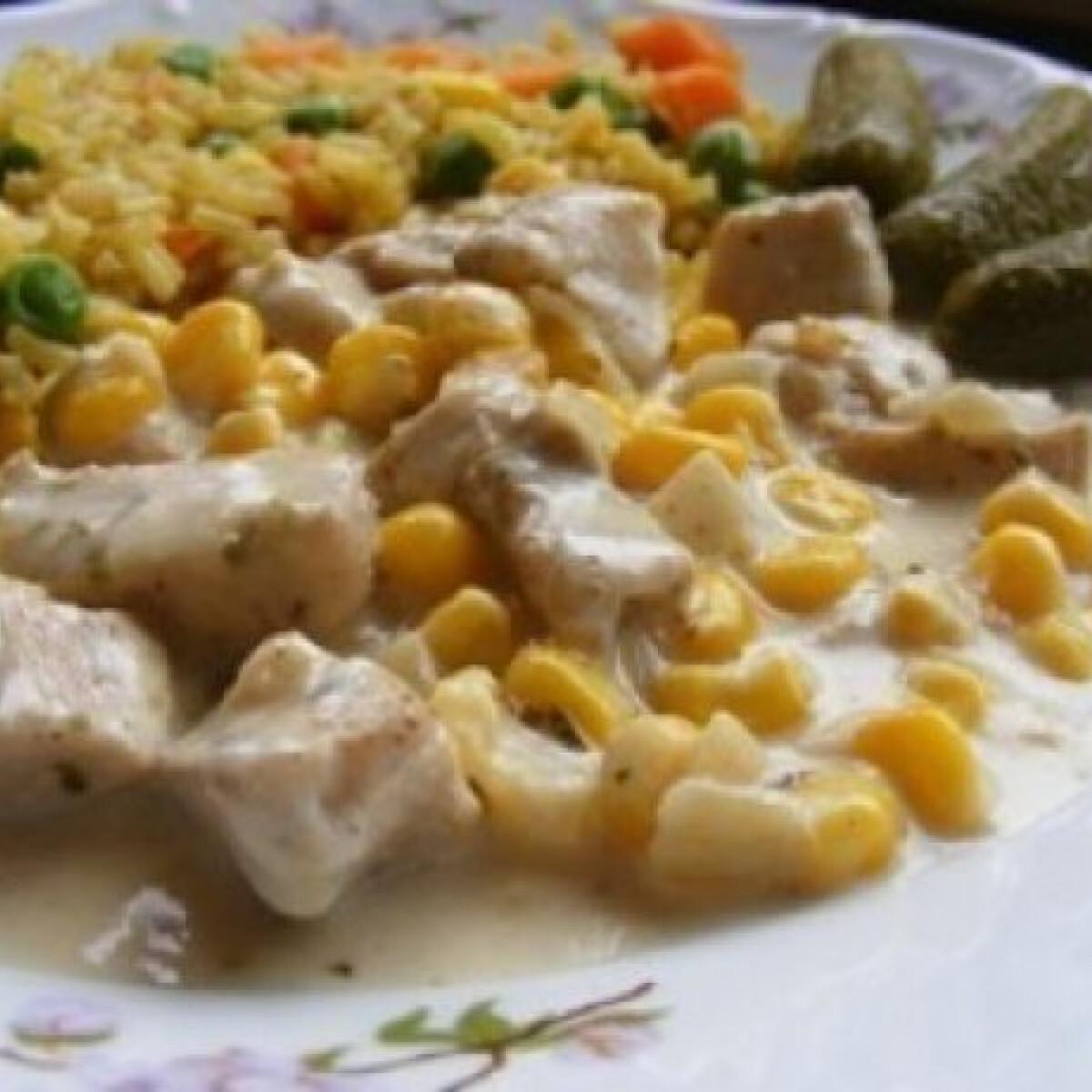 Ezen a képen: Zöldfűszeres-tejszínes csirkemell currys rizzsel