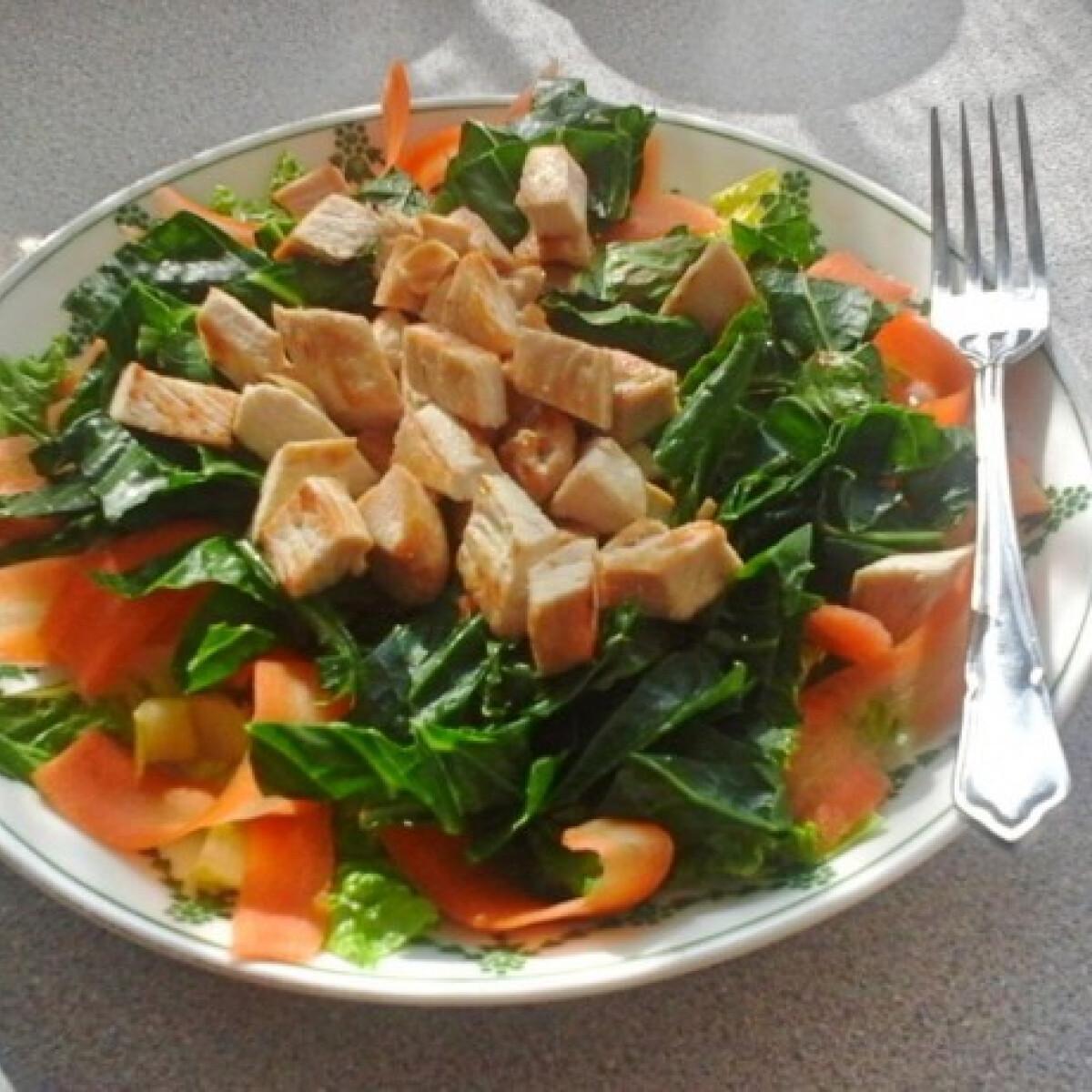 Pulykás-fodroskel-saláta