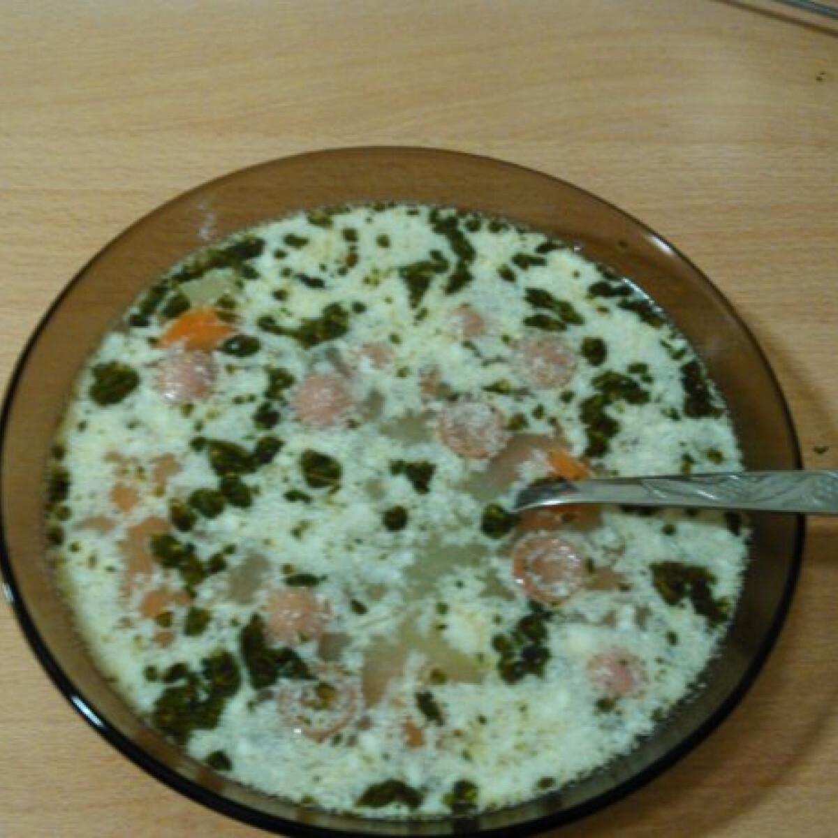 Ezen a képen: Hamis tárkonyos leves