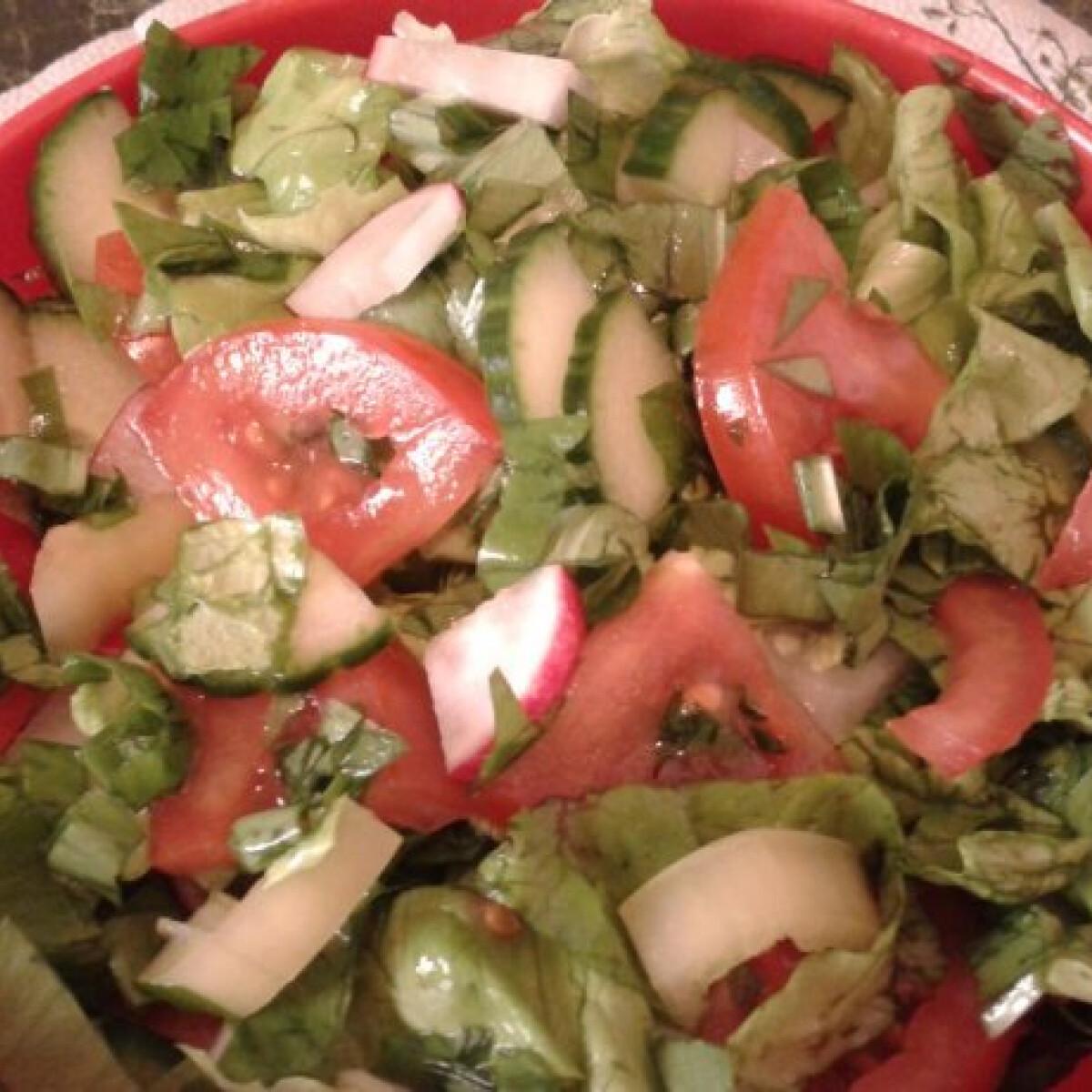 Ezen a képen: Saláta káposztaleves kúrához