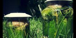 Kovászos uborka Tetra konyhájából