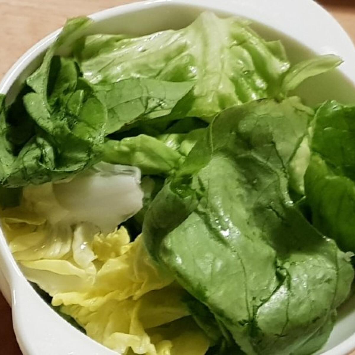Ezen a képen: Fejes saláta Gourmandtól