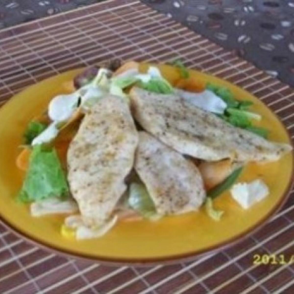 Ezen a képen: Szláv csirkemell