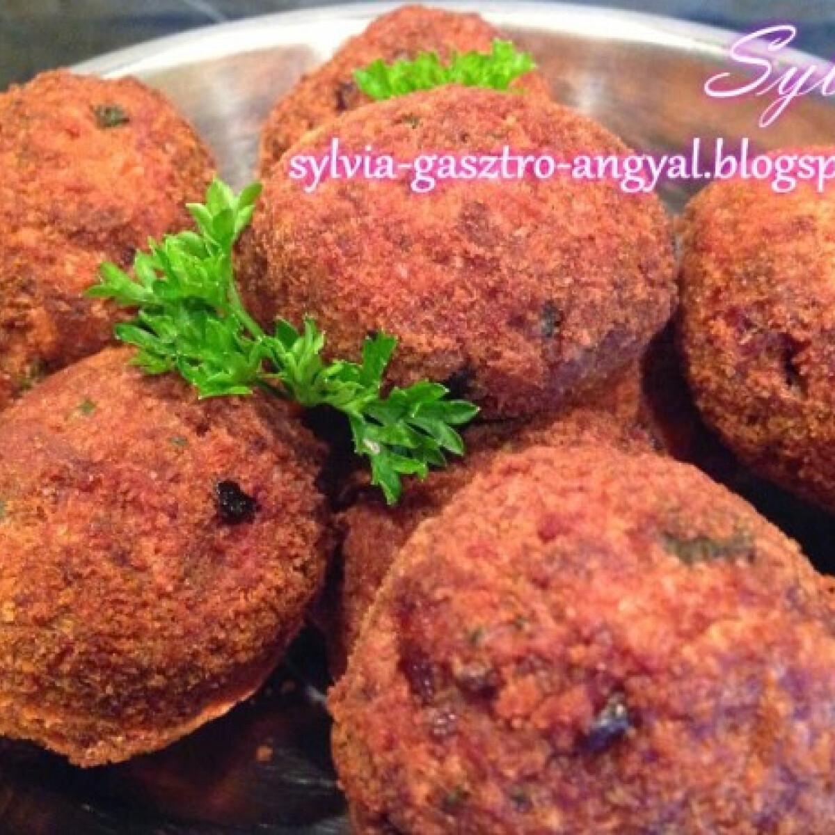 Fasírt Sylvia Gasztro Angyal konyhájából