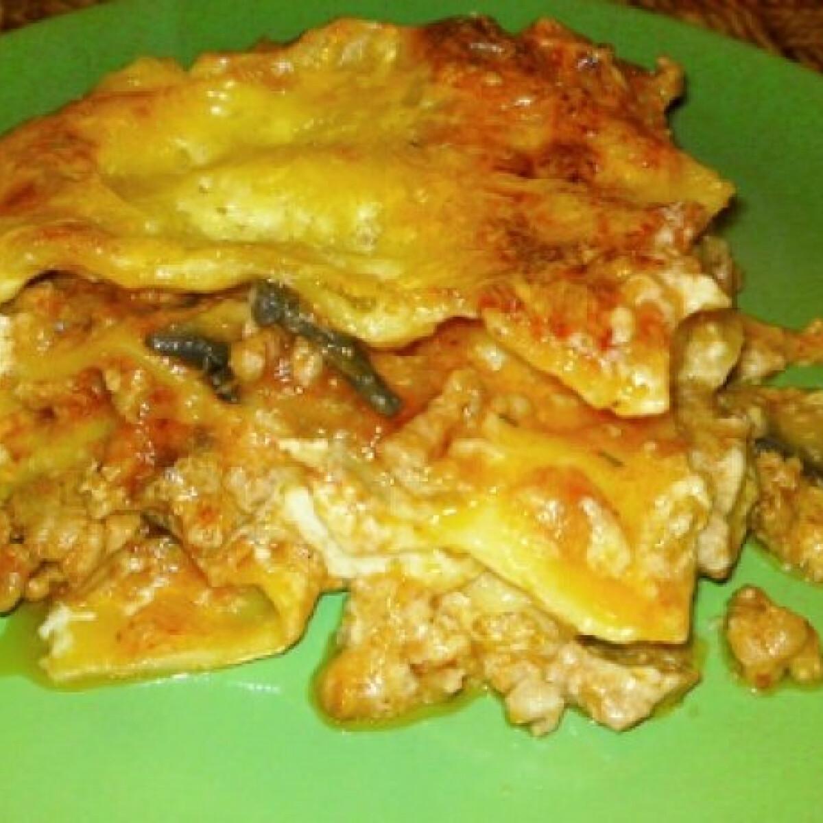 Ezen a képen: Zöldséges-húsos lasagne