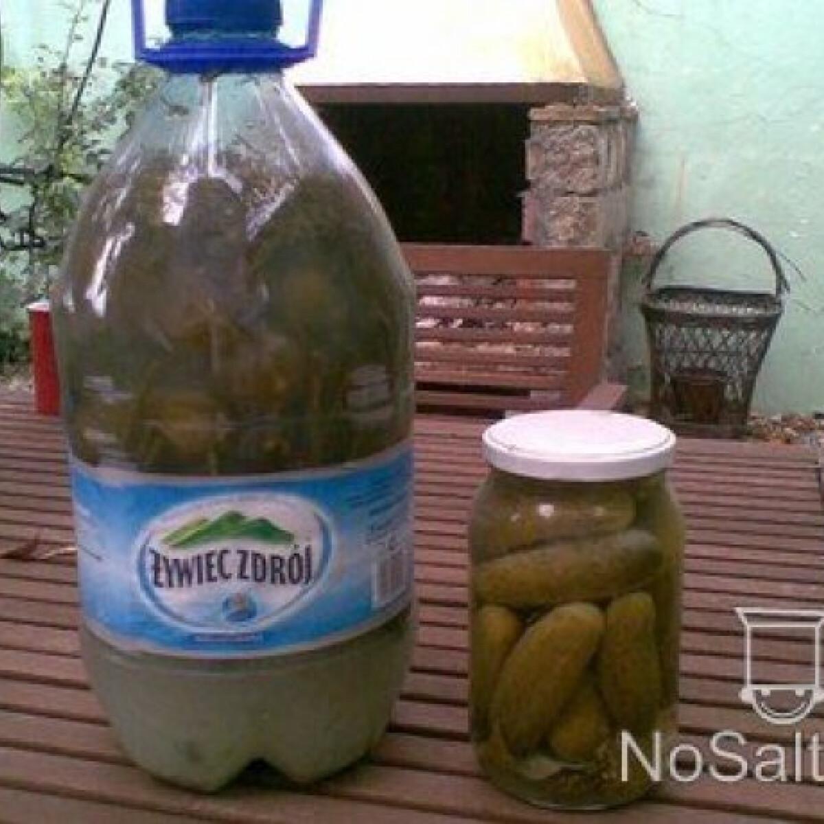 Ezen a képen: Kovászos uborka télire - tartósítószer nélkül