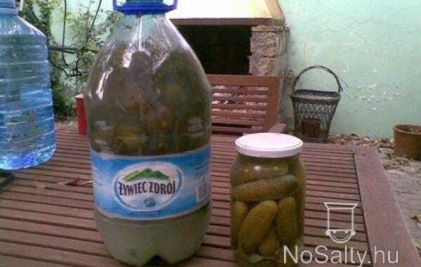 Kovászos uborka télire - tartósítószer nélkül