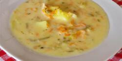 Lengyel sósuborka-leves