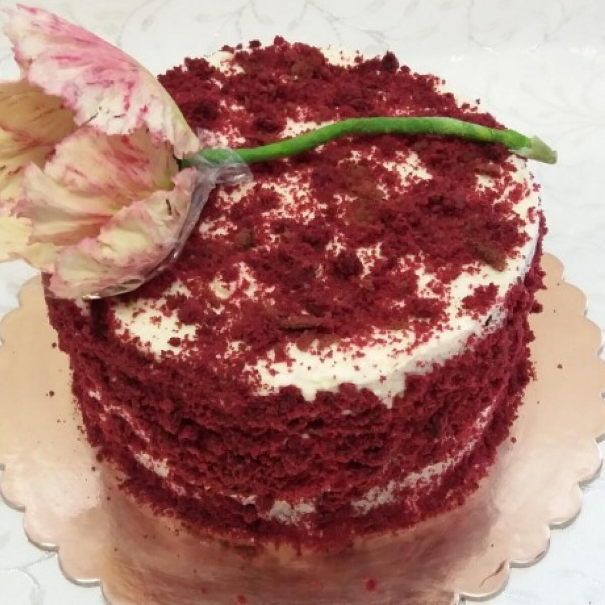 Ezen a képen: Egyszerű vörös bársony torta