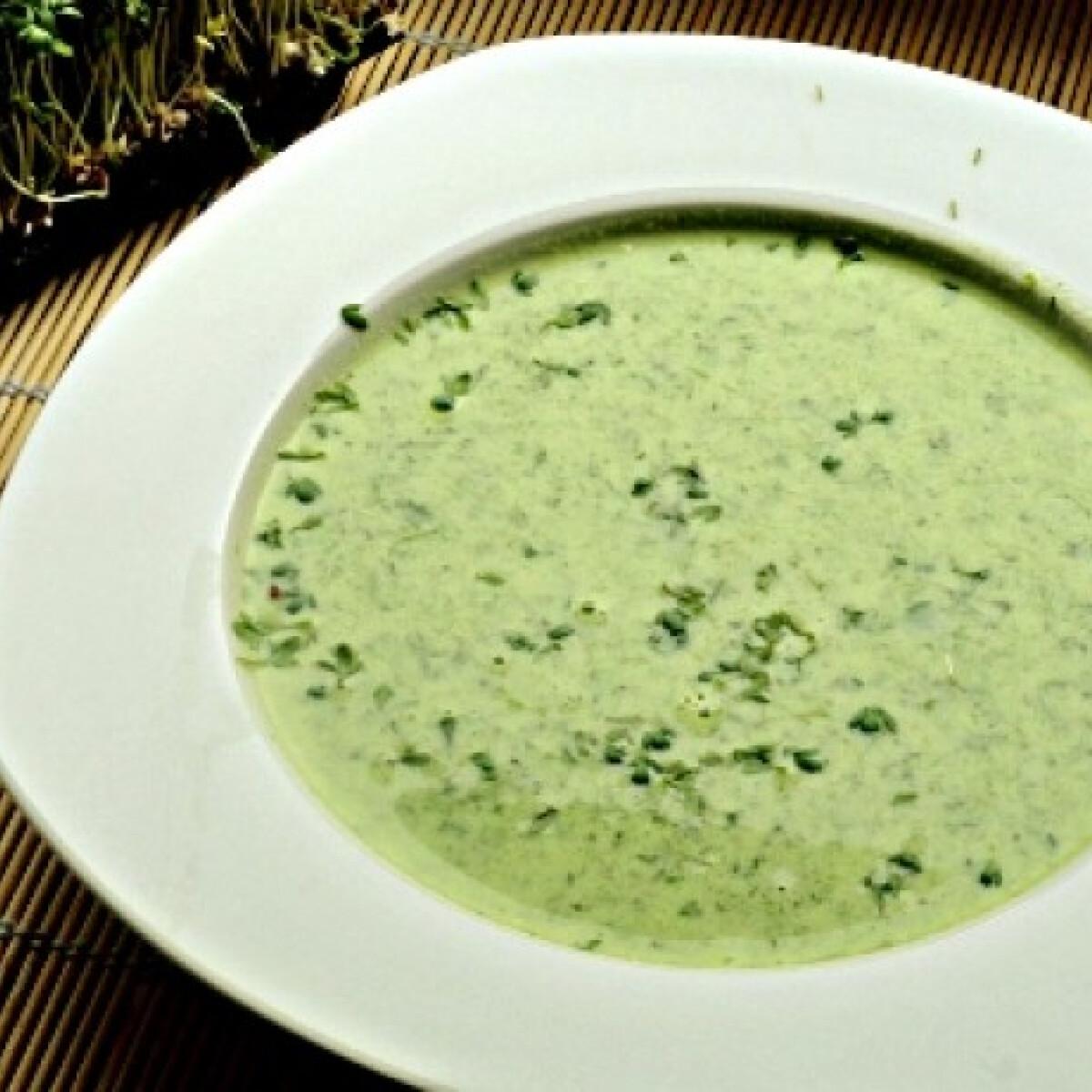 Zöldfűszeres-joghurtos leves