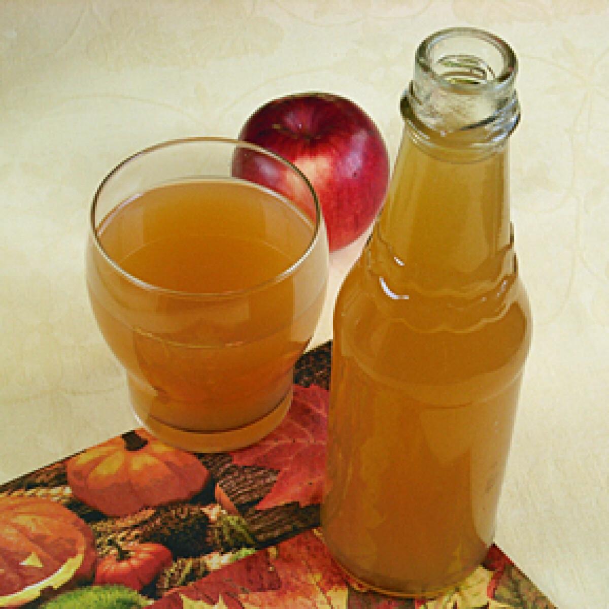 Ezen a képen: Natúr almalé házilag