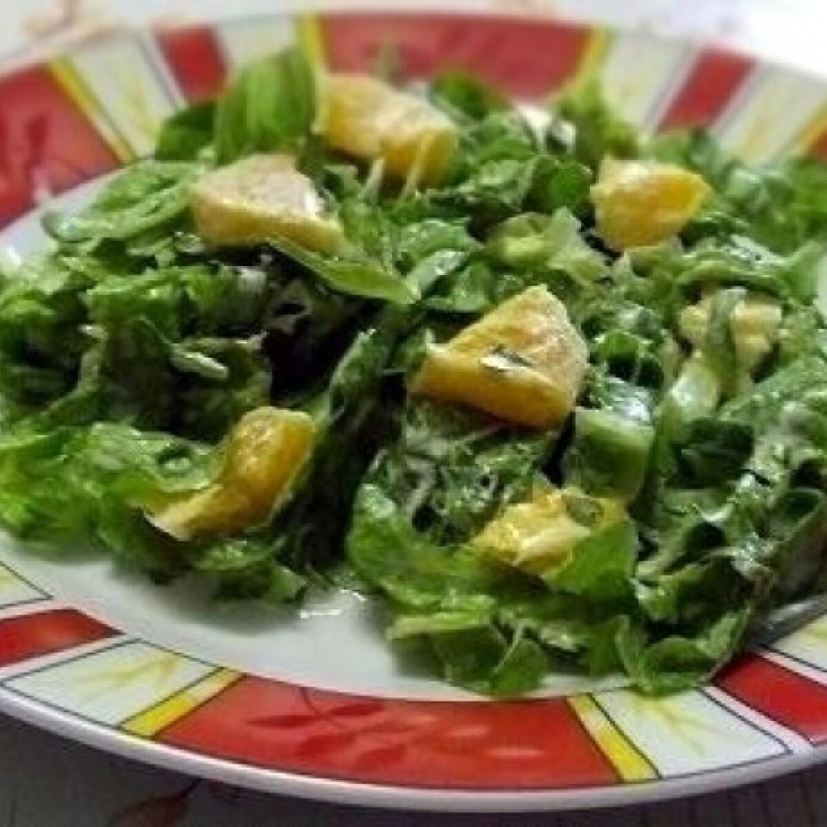 Ezen a képen: Narancsos saláta