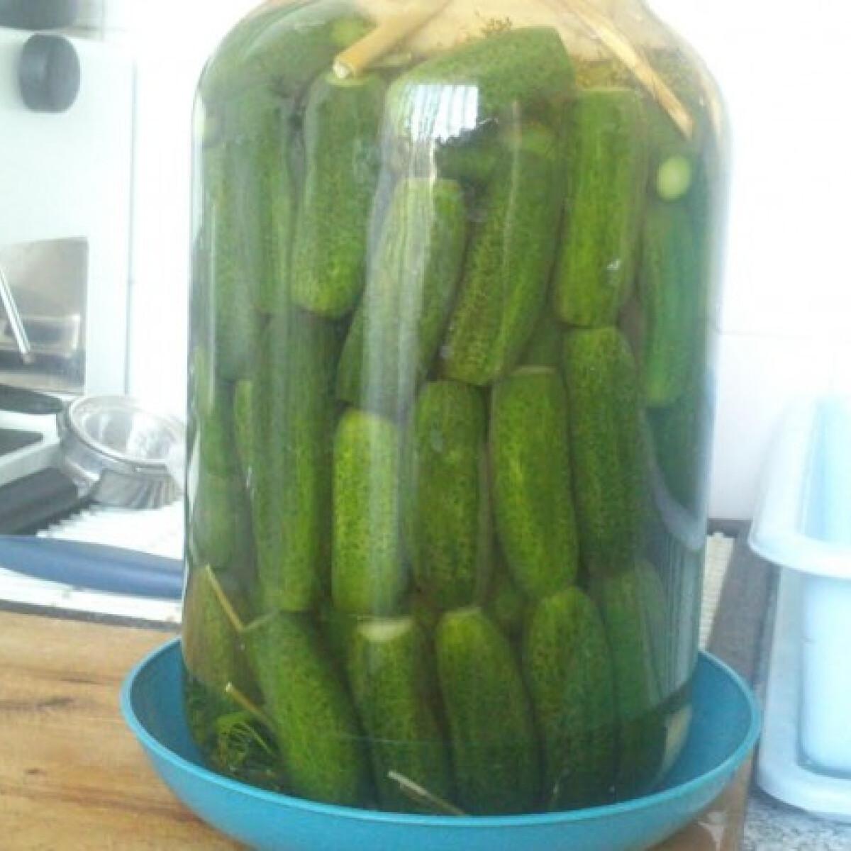 Ezen a képen: Kovászos uborka Odzsi konyhájából