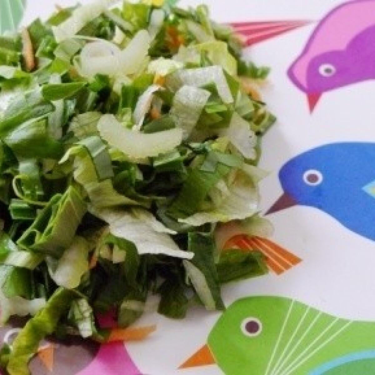 Ezen a képen: Medvehagymás saláta