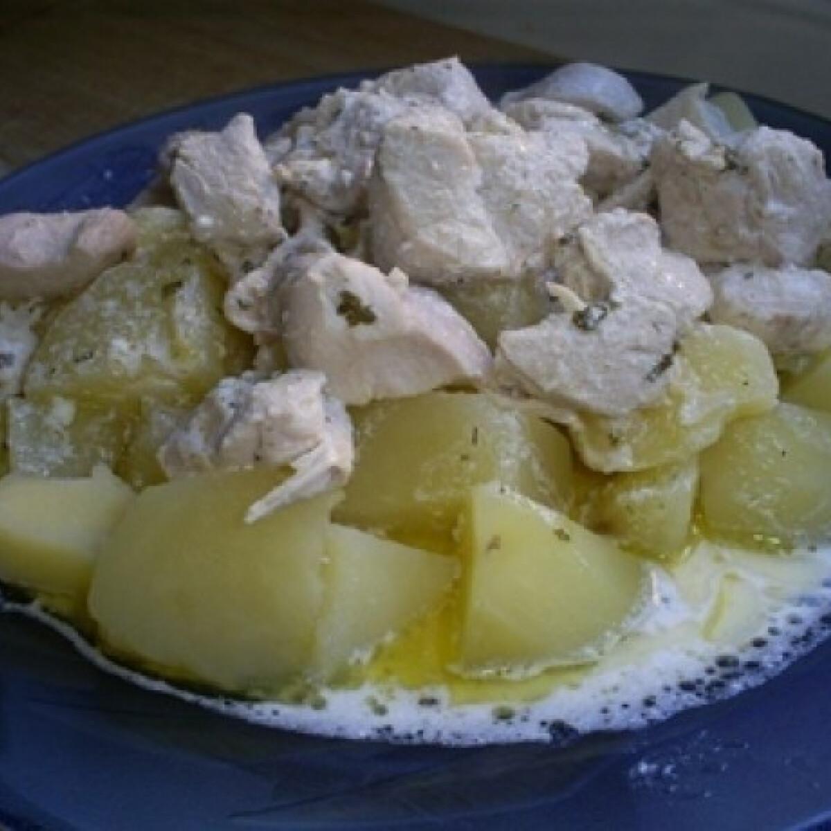 Tejfölös (lengyel) csirkemell