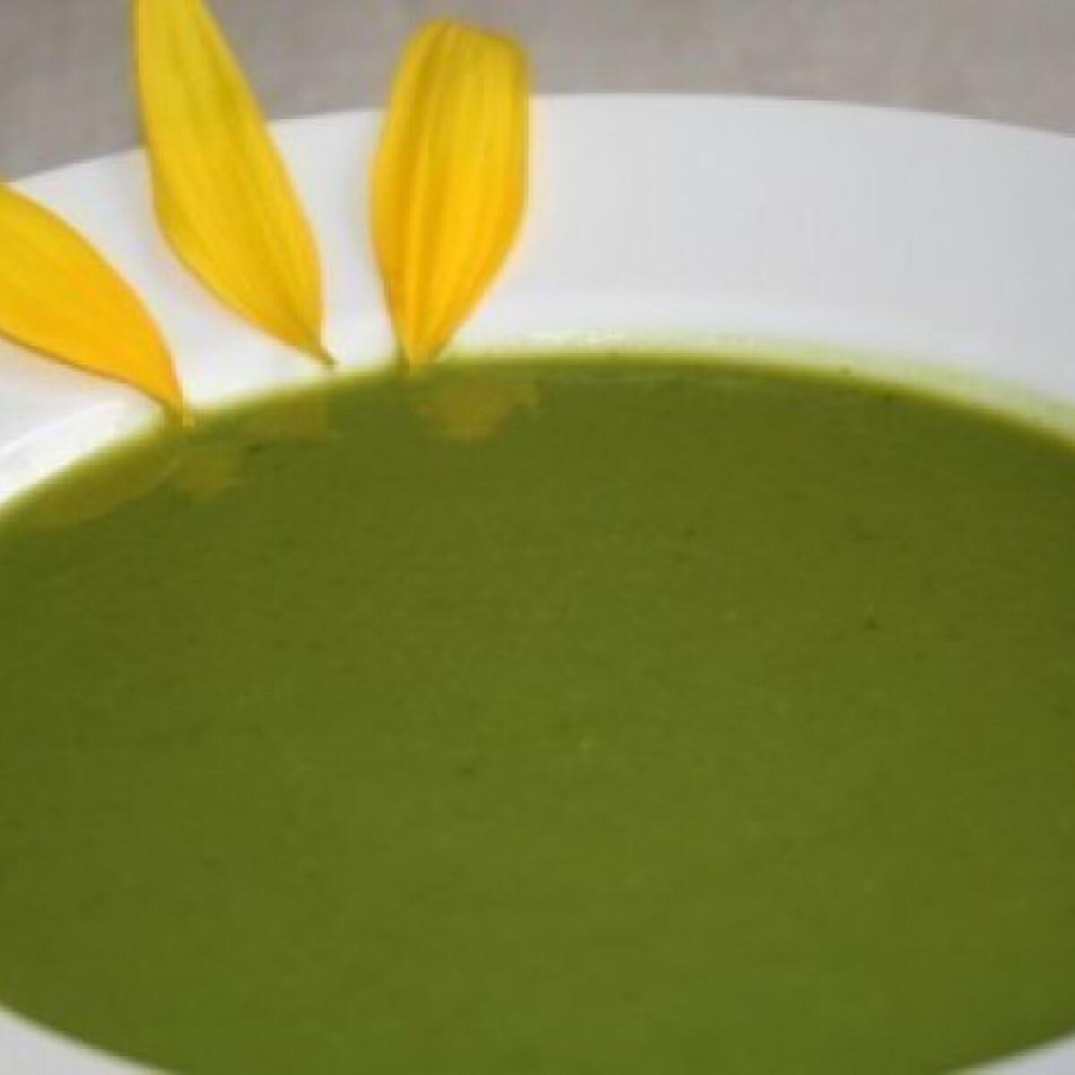 Ezen a képen: Natúr brokkolikrémleves