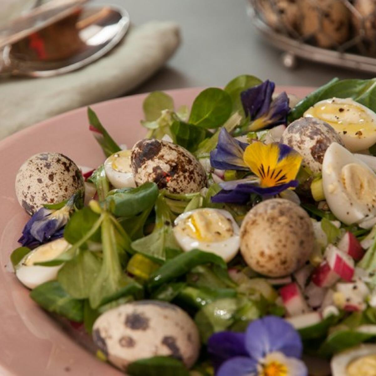Ezen a képen: Tavaszi saláta árvácskával